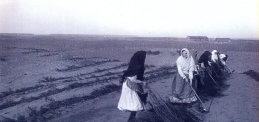 djurdjevac-sand