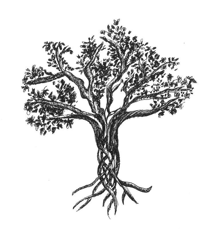 tree_trennie