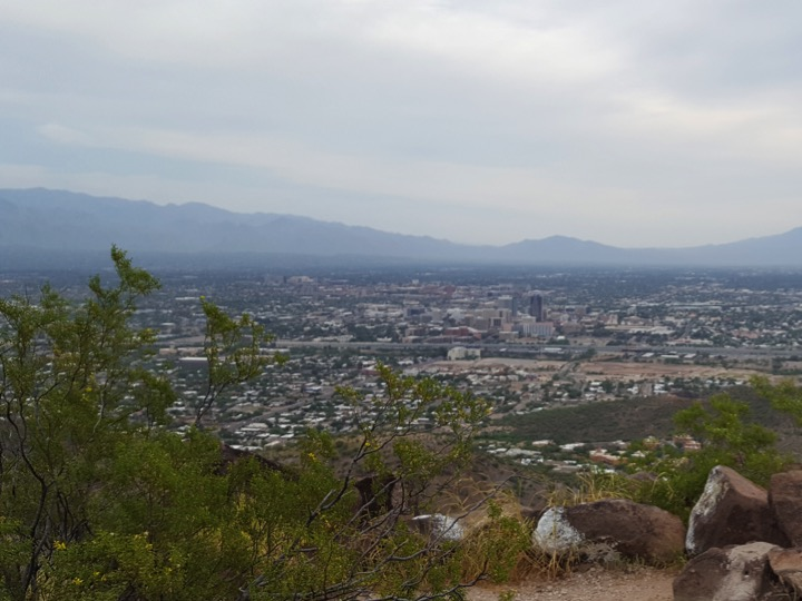 Looking over Tucson from Tumamoc Hill