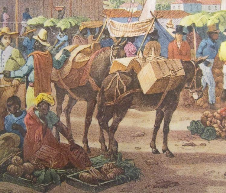 mules RUGENDAS1835
