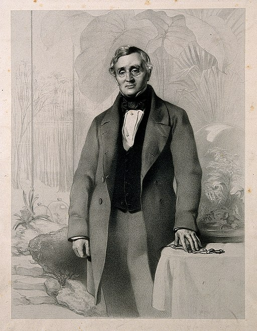 Nathaniel_Bagshaw_Ward._Lithograph_by_R._J._Lane_after_J._P._Wellcome_V0006144